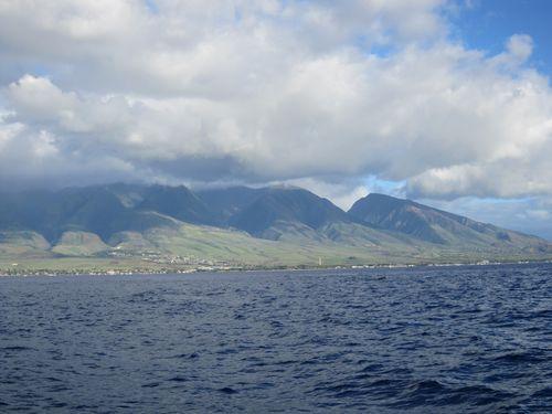 Jan. 2011 119